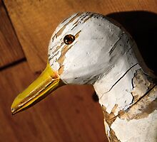 Dilapidated Decoy by Bob Webb