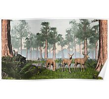 Three Deer Poster