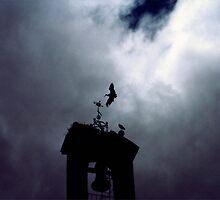 Stork, Salamanca, Spain, 1987 by jackmbernstein