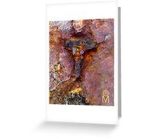 FACE ON A ROCK.. Greeting Card