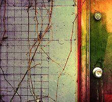 The Door, The Wall & The Weeds by Tara  Turner
