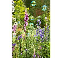 Bubble Garden Photographic Print