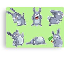 Emotional cute rabbits Canvas Print