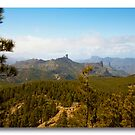 Cruise 2010 Canary Islands *SEE LARGE* by John44