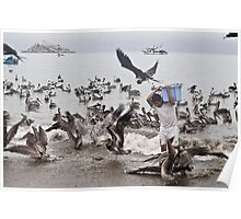 Birds take away from the fisherman of fish Poster