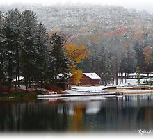 First Snow of 2009 by vigor