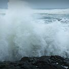 Splash on the Rocks by Annie Underwood