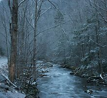 Fresh Snow in the Smokies by Pete Nunweiler