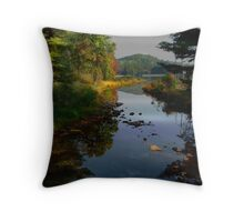 One Day Last September Throw Pillow