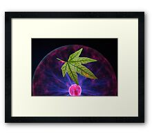 Science and Nature Framed Print