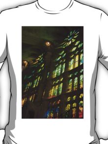 Glorious Colors and Light T-Shirt