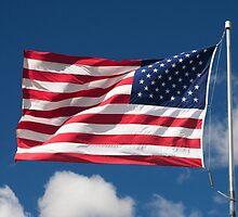 USA Flag by William C. Gladish