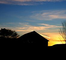 Sunset along a country road by Jcook