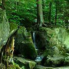 Mountain Waterfalls by Jcook