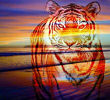 Remembering Richard Parker by Darlene Lankford Honeycutt