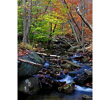 A woodland stream in fall Photographic Print