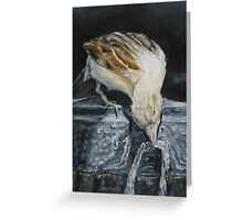 Bird Oil painting  Greeting Card