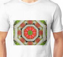 ~ Shamanic Delicacy ~  Unisex T-Shirt