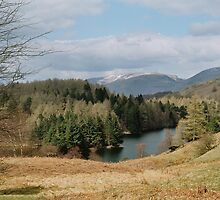 Tarn Hows by WatscapePhoto