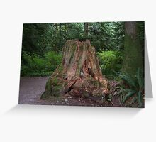 Forest stump Greeting Card