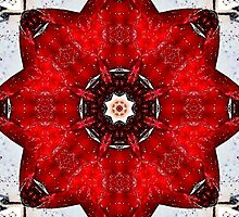~ Slavic Mandala ~ by Alexandra  Lexx