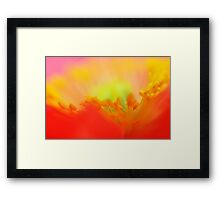 Pyschedelic Poppy Sunset... Framed Print
