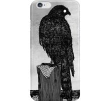 Watchful bird iPhone Case/Skin