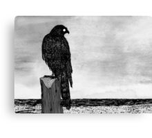 Watchful bird Canvas Print