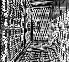 Hall of Shadows by Bob Larson