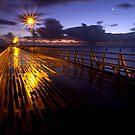 Wet Morning by Liza Yorkston