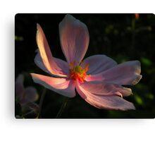 Una flor ........ Canvas Print