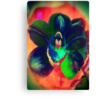 4088 Psychedelic Orchid Canvas Print