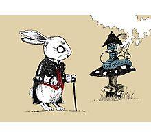 White Rabbit & Caterpillar in Wonderland Photographic Print