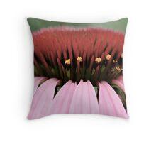 Echinacea Throw Pillow
