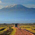 Kilimanjaro by Brendan Buckley