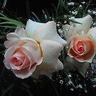Rosas rosadas.............. by cieloverde