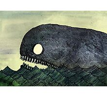 Monstrous Whale Photographic Print
