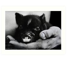 """Piglet in Palm"" Art Print"