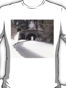 Snowing on the canal at Newbold T-Shirt
