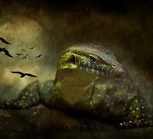 The Night Stalker by Ann  Van Breemen