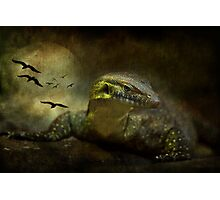 The Night Stalker Photographic Print