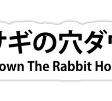 Down The Rabbit Hole Sticker