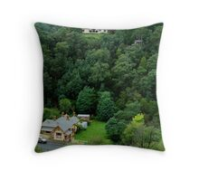 Perched,Walhalla Hospital. Throw Pillow