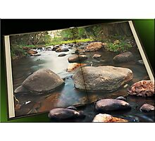 The Living Book Photographic Print