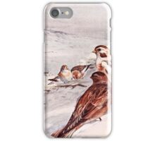 Winter Scene with Snow Buntings iPhone Case/Skin