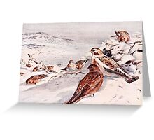 Winter Scene with Snow Buntings Greeting Card