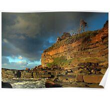 Tenacity of Nature - Garie Beach, NSW Poster
