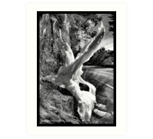 Mother Nature's Sculptures Art Print