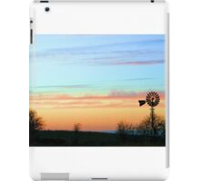 Pastel on the Plains iPad Case/Skin