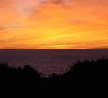 Coorong Sunrise by Scotie